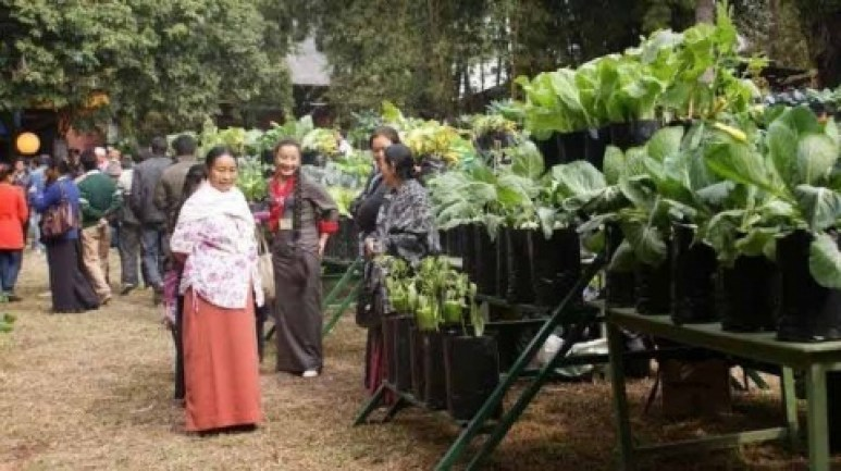 Así es Sikkim, el primer estado 100 por ciento orgánico del mundo