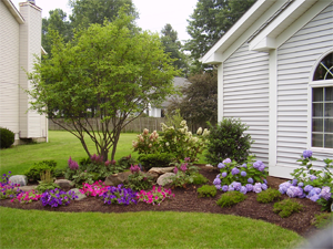 5 landscape edging options for your home