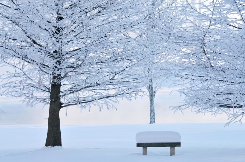 Winter-Blues (1).jpg