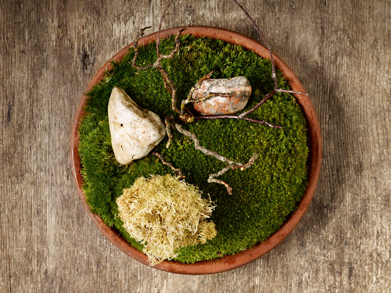 Fried Finnish reindeer moss with pulverized cep mushrooms at Noma. Photograph: Mikkel Heriba. Top: André Chiang's wild rabbit with lard de Bigorre and braised mustard seed at Restaurant André.