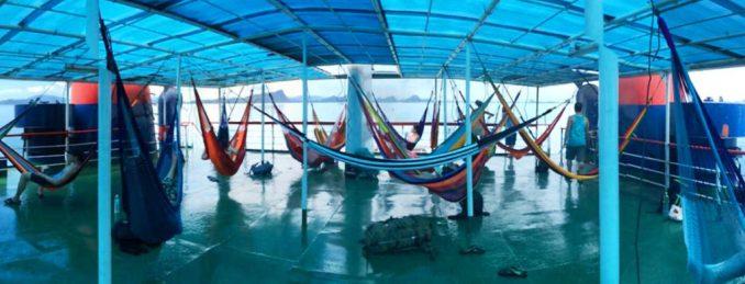 Nieva-Burns-hammock-1024x392