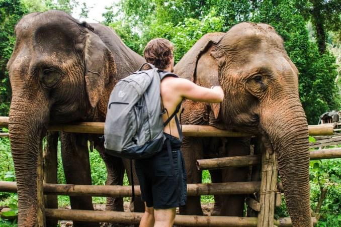 elephants-banana-backpacks