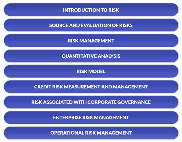 Risk Management: CA Final Elective Papers Syllabus Overview