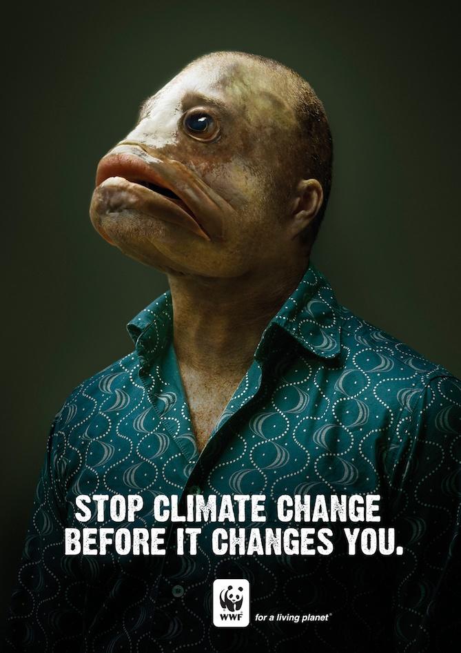 wwf-climate-change.jpg