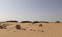 'No-Grow Zone': Israel Admits to Spraying Poisons Inside Gaza Strip