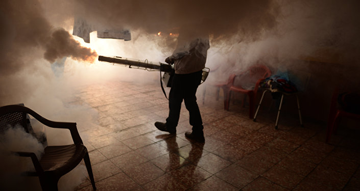Health Ministry employee fumigates a home against the Aedes aegypti mosquito to prevent the spread of the Zika virus in Soyapango, six km east of San Salvador, on January 21, 2016