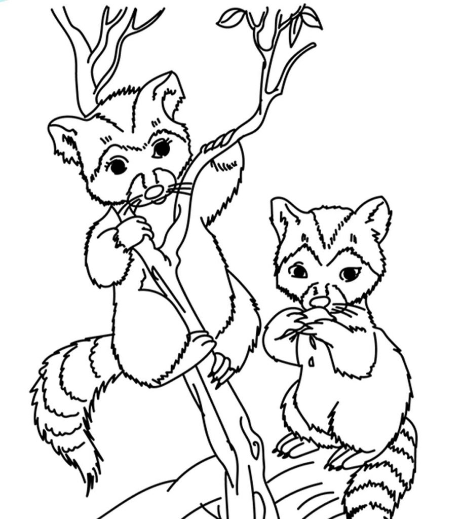 Top 25 Free Printable Wild Animals Coloring Pages Online | animal coloring pages for toddlers