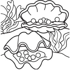 top  free printable shell coloring pages online