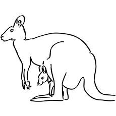 kangaroo coloring pages # 2