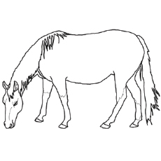 free printable horse coloring pages # 12