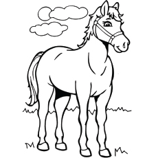 free printable horse coloring pages # 0