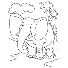 coloring pages of elephants # 3