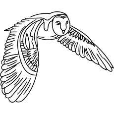 printable owl coloring pages # 64