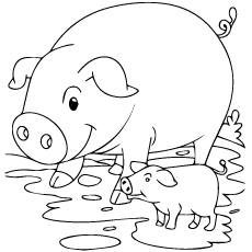 coloring pages of pigs # 7