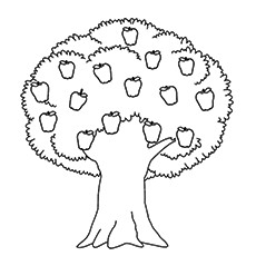apple tree coloring pages # 5