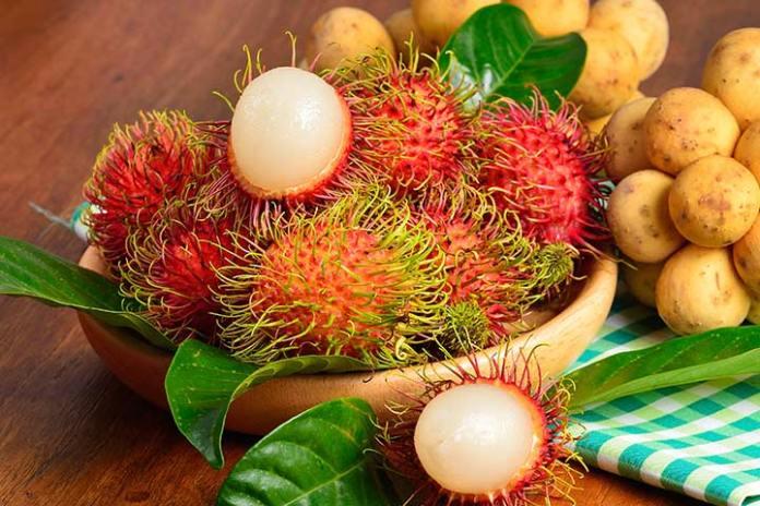 Image result for pregnant eat Ripe Rambutan