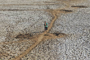 Photo - A villager walks on a dried up dam after collecting some water in Rongkop, central Java, Indonesia, Saturday, Sept. 19, 2015. Several areas on the densely populated island of Java have been hit by drought during this dry season, forcing villagers to walk long distances to find clean water. (AP Photo/Trisnadi)