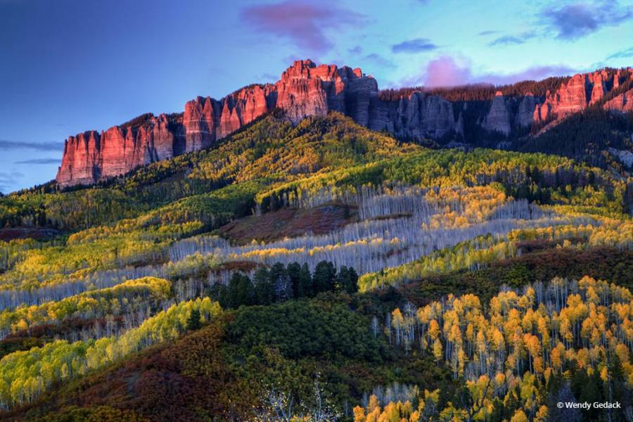 """Today's Photo Of The Day is """"The Glow of Fall"""" by Wendy Gedack. Location: Uncompahgre National Forest, Colorado."""