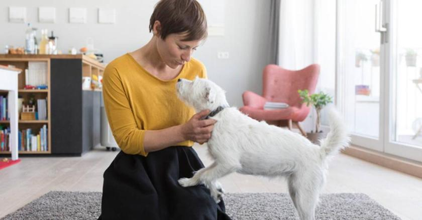 Pet owner with her dog