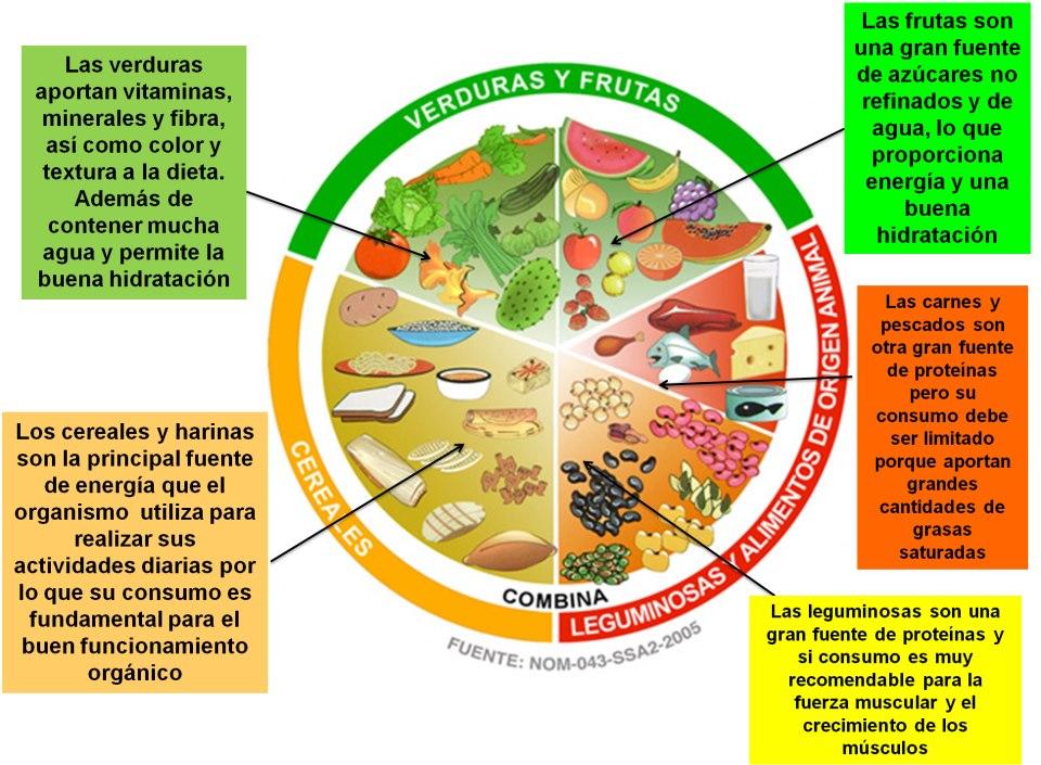 Que Comidas No De Lista Carbohidratos Tienen