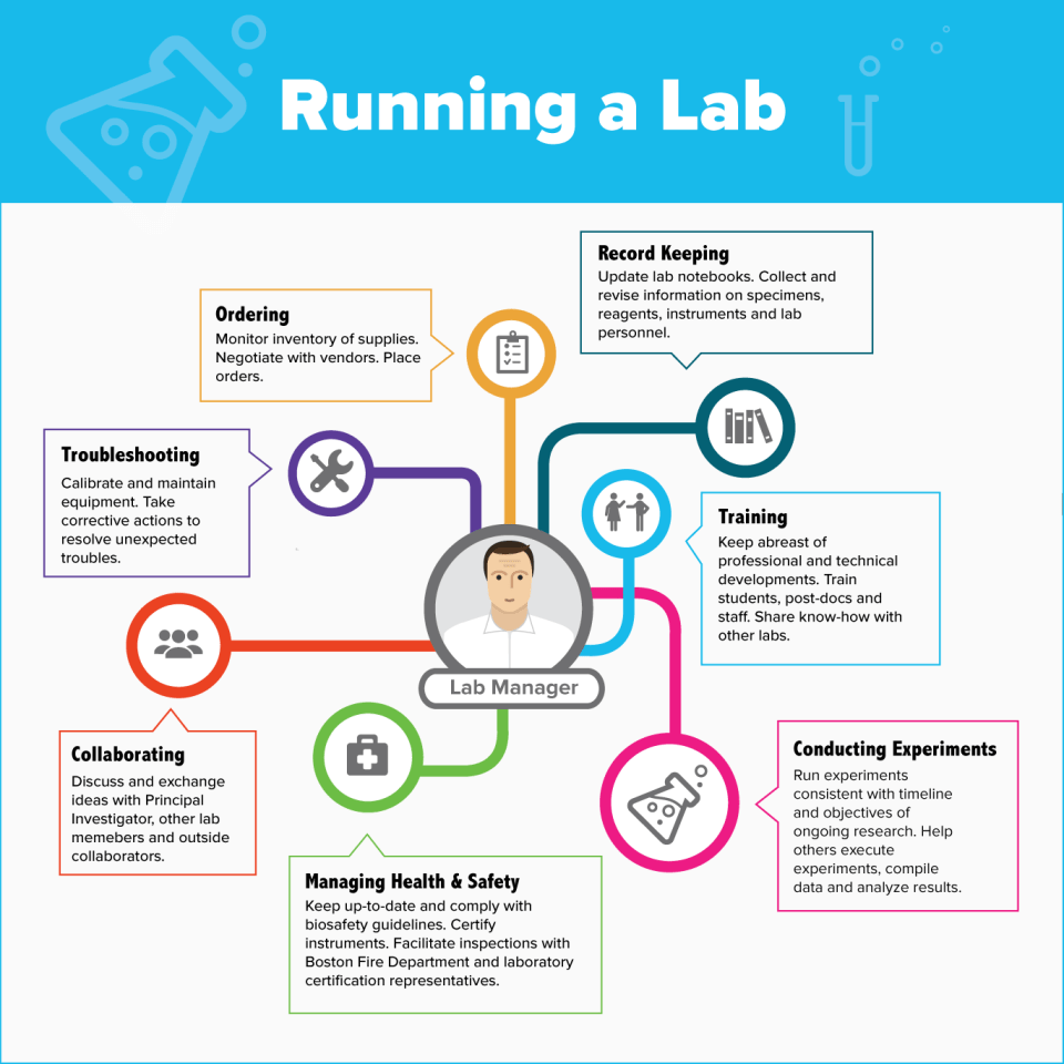 Infographic illustrating duties of a Lab-Manager
