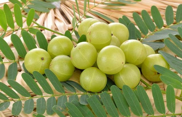 Amla-And-Henna-Pack1