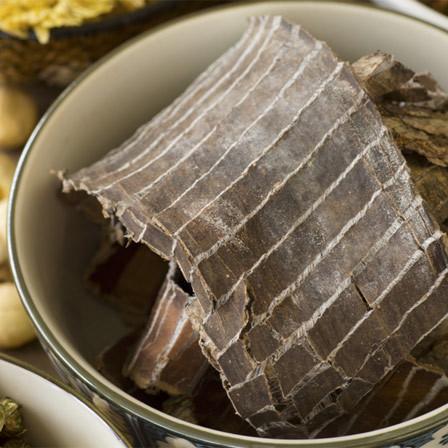 Herbs To Cure Arthritis - Eucommia