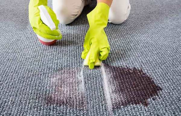 Allow the carpet to dry on its own and then vacuum it one last time