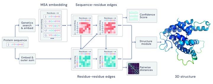 DeepMind精準預測蛋白質結構,AI解決50年生物學難題!   T客邦