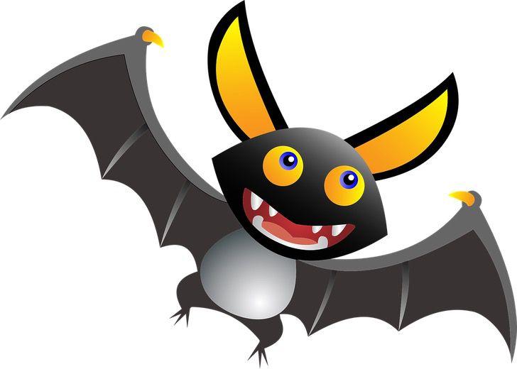 animal 1817643 960 720 - El extraño murciélago con apariencia de «perro volador» que fue hallado en África. Es una belleza