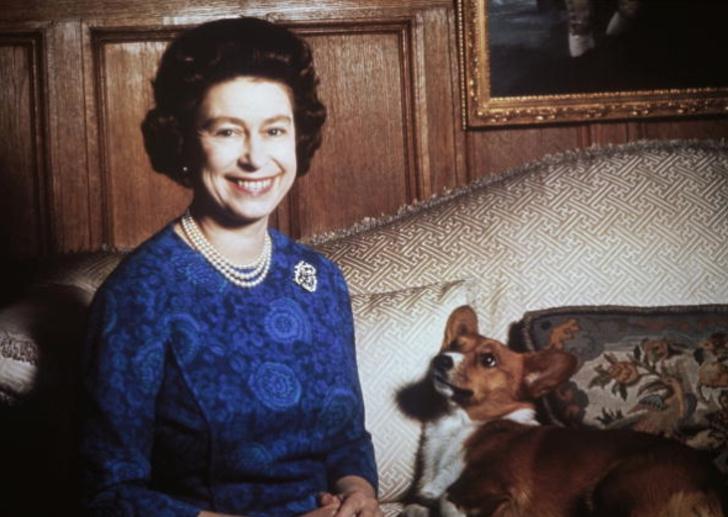 2 96 - 10 requisitos que debe cumplir el personal de la realeza para brillar ante la reina