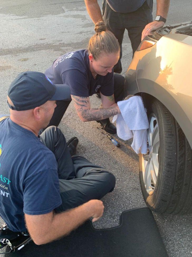 Captura de Pantalla 2021 09 08 a las 17.01.55 - Gatito fue adoptado por bombero que lo rescató al quedar atrapado en una rueda. Lo llamaron Chevy
