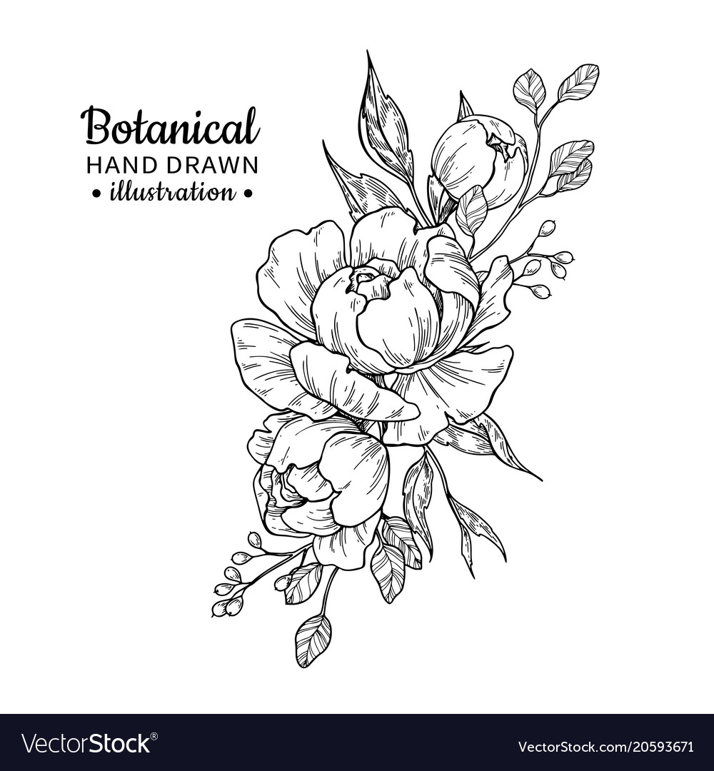 Flower Bouquet Images Drawing Walljdi