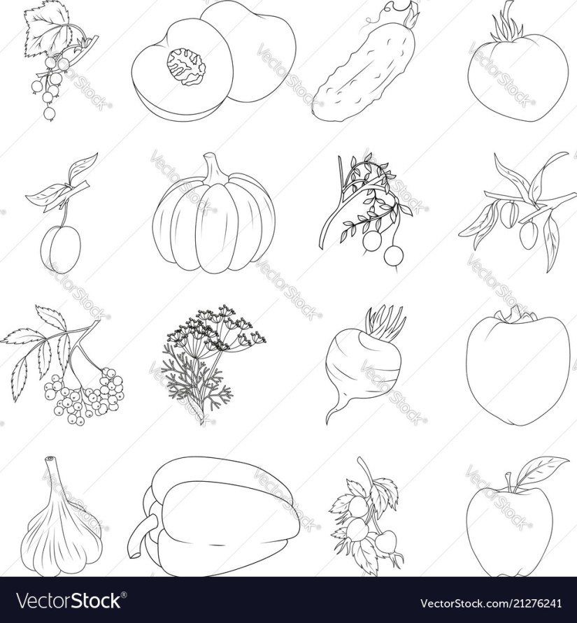 coloring book set of fruits and vegetables