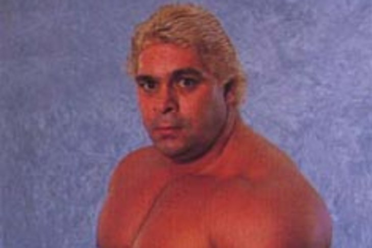 Dino Bravo's Cageside Evaluation - Cageside Seats
