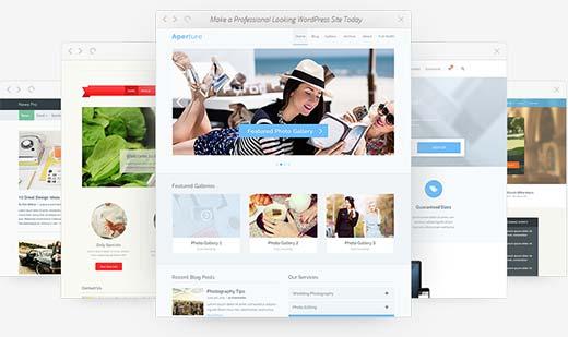 Using WordPress Themes