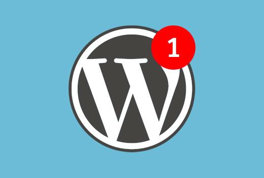Add and customize WordPress notifications