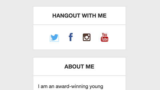 Social media icons in a menu displayed in WordPress sidebar