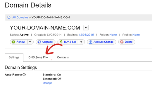 Launch DNS Zone File in GoDaddy