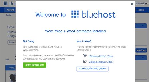 Bluehost first login