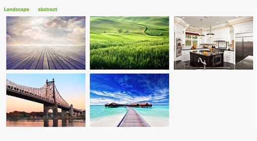 Thêm tính năng lọc thẻ trong WordPress với addon Thẻ của Envira Gallery