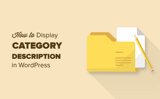 How to display category description in WordPress