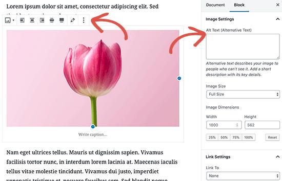 Параметры изображения в редакторе сообщений WordPress