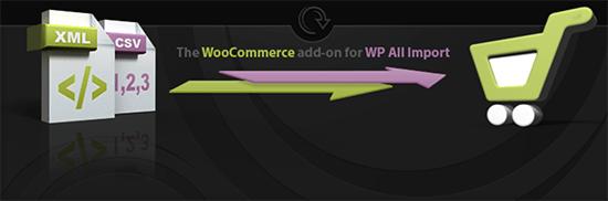 WooCommerce WP All Import