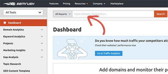 Track a domain name in SEMRush