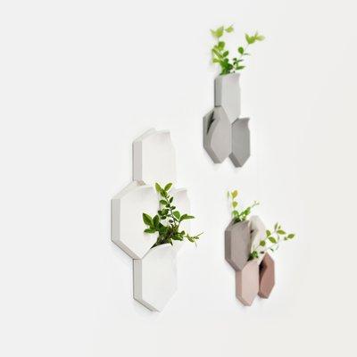 È il caso, ad esempio, dei vasi eleganti per interni kos, ottimi sia per il terrazzo sia per l'appartamento. Vasi Da Parete Teumsae Bianchi Di Extra Ordinary Design Set Di 4 In Vendita Su Pamono