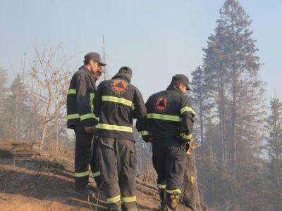 В Атенском ущелье в Грузии ликвидировали почти все лесные пожары