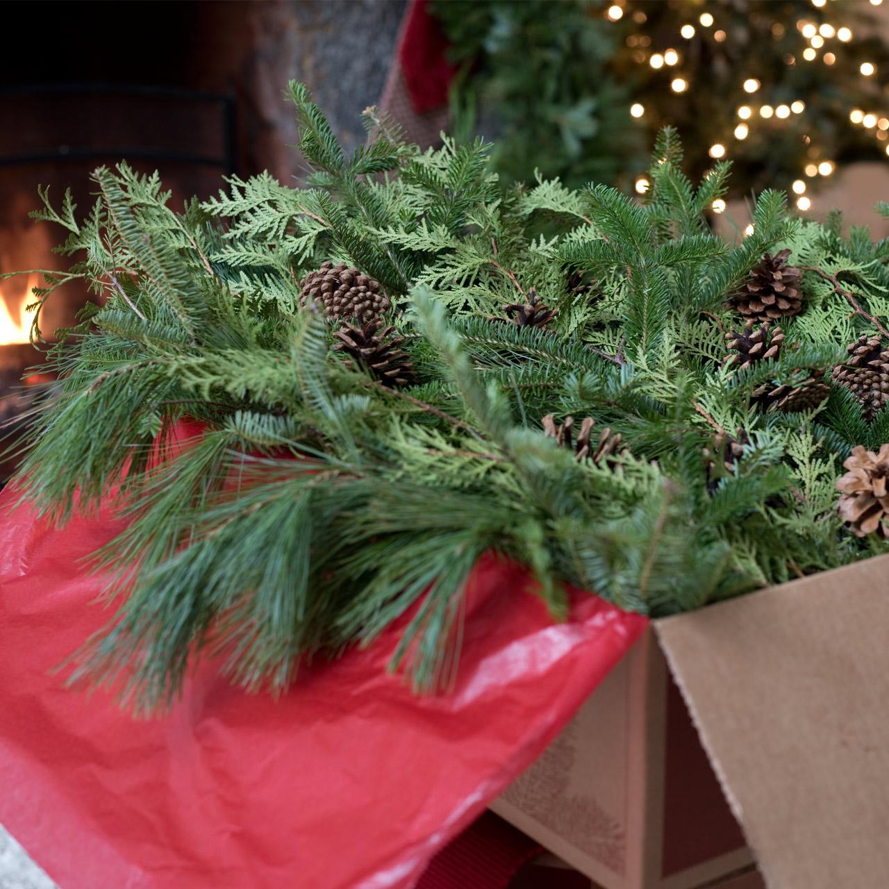 Old Fashion Christmas Lights