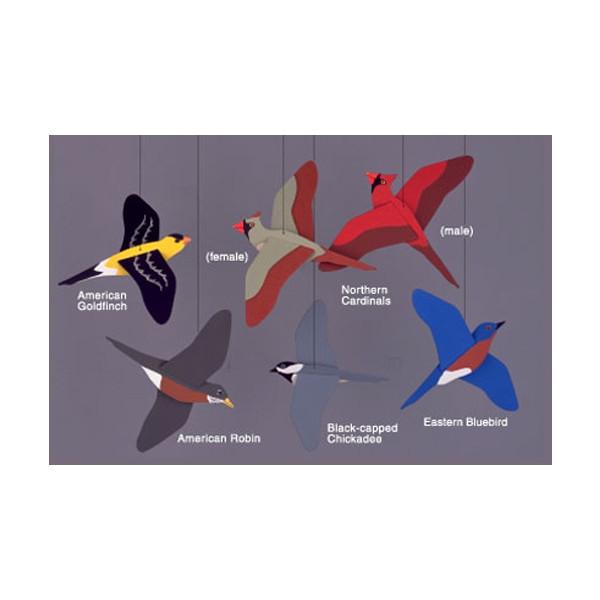 Songbird Mobile | 2Shopper.com