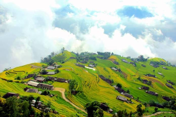 Đến Bản Phùng vào mùa lúa chín, du khách rất dễ gặp được mây khói lan tỏa. Cả bản làng như đang bồng bềnh trôi, một khung cảnh thần tiên dành cho những aidám thoát ra khỏi cám dỗ của chăn mền ấm áp lúc tờ mờ sáng.
